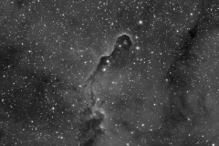 IC 1396 - Elephant Trunk Nebula